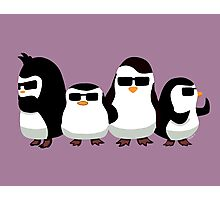 Penguins of Madagascar Photographic Print