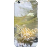 Cactus Flower - Fluff N Stuff  iPhone Case/Skin