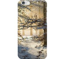 Filtering through  iPhone Case/Skin