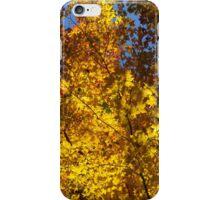 Hot Autumn Palette iPhone Case/Skin