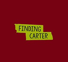 Finding Carter by D. Abdel.