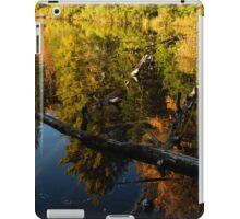 Mesmerizing Fall Reflections iPad Case/Skin