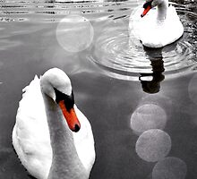 Swans on Tooting Common by Ludwig Wagner