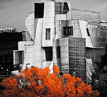 autumn at the Weisman by blumwurks