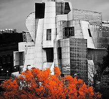 autumn at the Weisman by blumwurks