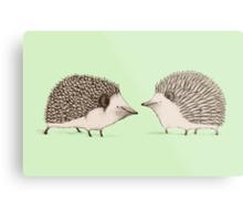 Two Hedgehogs Metal Print