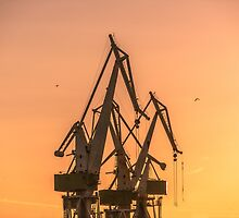 Industrial cargo cranes in the dock by iWorkAlone