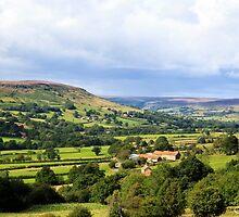 A Farm in Farndale by maureen bracewell