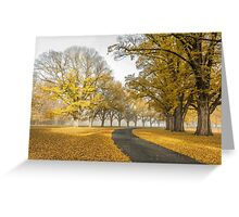 Gostwyck Road is lined with Gold - Uralla NSW Australia Greeting Card