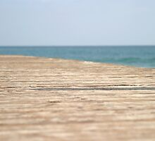 Beach Walk by Henrik Lehnerer
