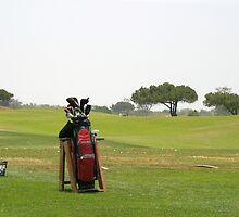 Golf Bag by Henrik Lehnerer