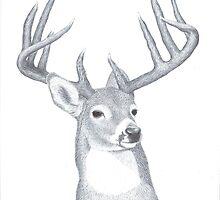 Trophy buck by Ron-n-Carol