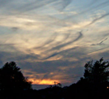 Black Feathery Wispy Clouds at Sunset Sticker