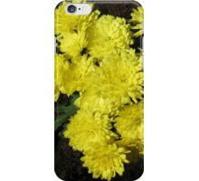 Formation Dancers - Yellow Miniature Chrysanthemums iPhone Case/Skin