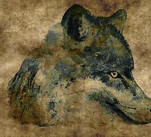 Wolf acrylics on paper textures by JamesPeart