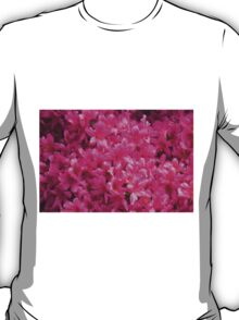 flowers in spring T-Shirt
