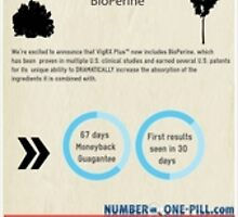 Vig Rx Plus male enhancement pills infographics and review by numberonepill