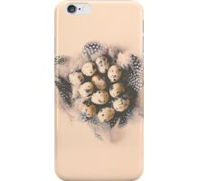 quail eggs nest iPhone Case/Skin