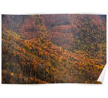 Great Smoky Autumn Poster