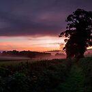 Hele Payne Farm - Devon by peteton