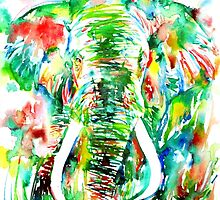 ELEPHANT - watercolor portrait by lautir