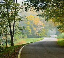 Lower River Road in Autumn by Jeanne Sheridan