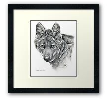 Maned Wolf g40 by schukina Framed Print