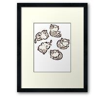 Impudent cats relax Framed Print