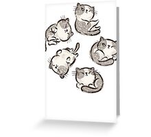 Impudent cats relax Greeting Card