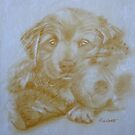 My Cuddly - puppy drawing by Paulette Farrell