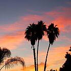 Having A Heatwave, A Tropical Heatwave by Chet  King