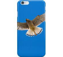 Kestrel in flight iPhone Case/Skin