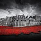 Tower of London Remembers.  by Ian Hufton