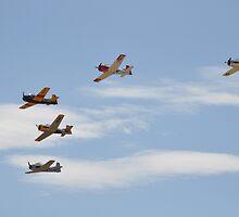 Trojan Formation, Temora Airshow, Australia 2013 by muz2142