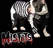 Misfits by DrFilloy