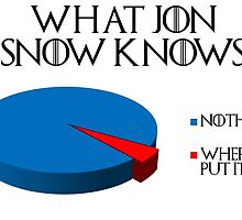 A Graph Detailing What Exactly Jon Snow Knows by chris-snow