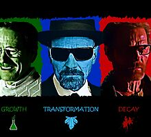 The Rise and Fall of Walter White by MrFudge