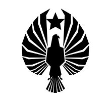 Pan Pacific Defense Corps by Devito