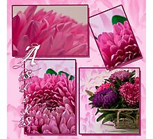 Aster Photo Collage Photographic Print