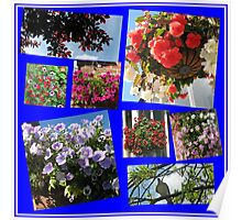 Sunny Days Floral Collage Poster