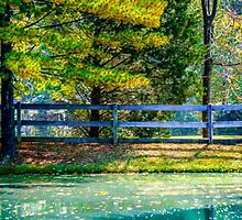 Autumn Scene With Pond and Fence by pjm286