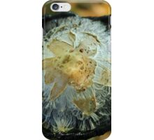 Guess What it Is iPhone Case/Skin
