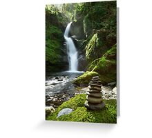 Wales - Dolgoch Falls 2 Greeting Card
