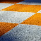 The Checkerboards by Chaney Swiney