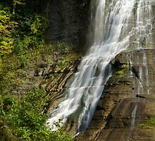 Fall Creek Waterfalls Landscape by Christina Rollo