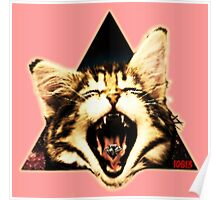 Kitten Triangle Poster