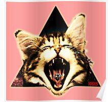Kitten Triangle Poster