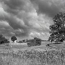 Storm Coming  by John Rivera