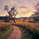 A Days Walk  by John Rivera