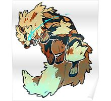 Fighting Arcanine  Poster